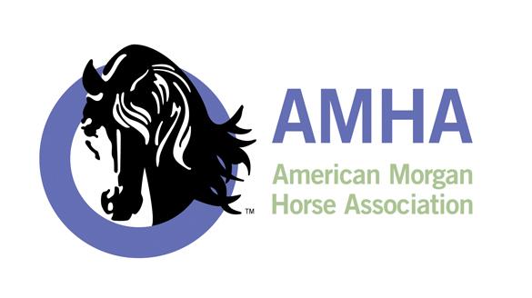Success Story: American Morgan Horse Association